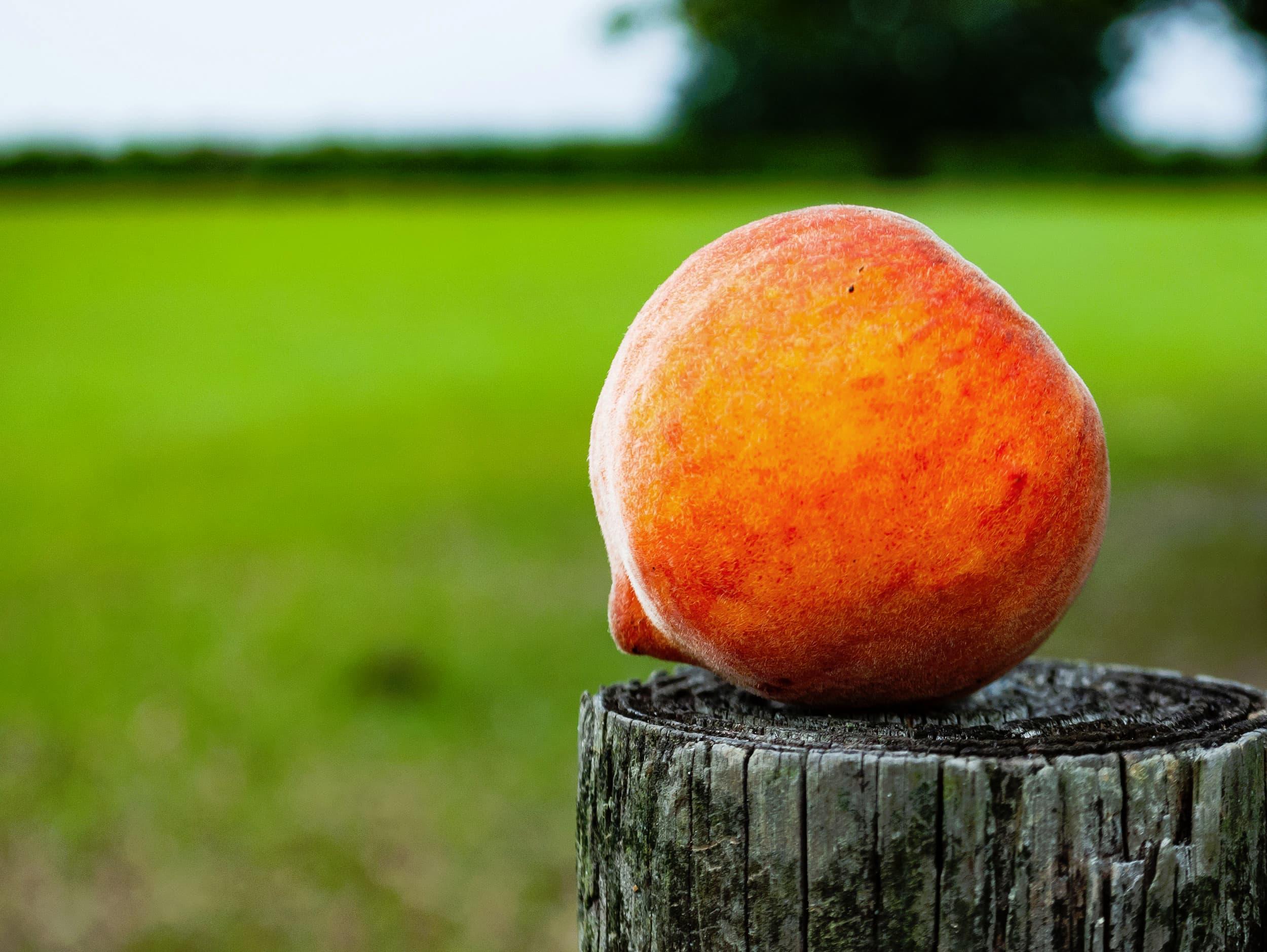 FreshOfTheFarm-Peaches4